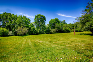 597 van beuren road harding township nj land for sale 4
