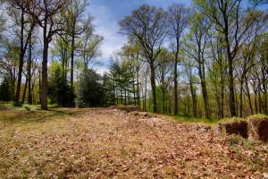 160 Chapin Rd Bernardsville Land for sale Feel @Home Realty (1)