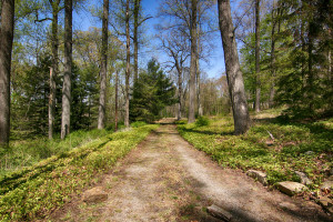 160 Chapin Rd Bernardsville Land for sale Feel @Home Realty (3)