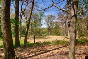 160 Chapin Rd Bernardsville Land for sale Feel @Home Realty (5)