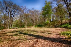 160 Chapin Rd Bernardsville Land for sale Feel @Home Realty (7)