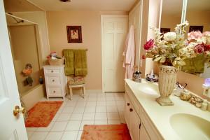 10 Old Fort Rd Bernardsville NJ Feel @Home Realty (14)